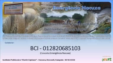 CARTEL - mozambique